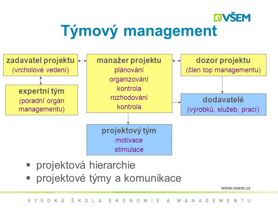 Týmový management projektová hierarchie projektové týmy a komunikace