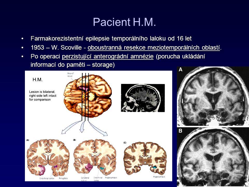 Pacient H.M. Farmakorezistentní epilepsie temporálního laloku od 16 let. 1953 – W. Scoville - oboustranná resekce meziotemporálních oblastí.