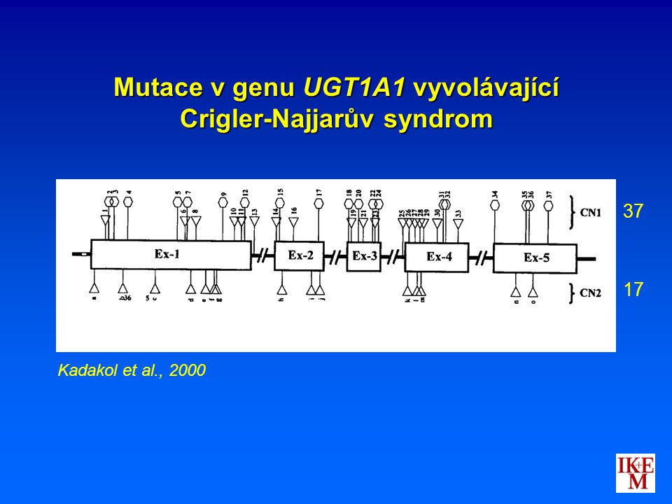Mutace v genu UGT1A1 vyvolávající Crigler-Najjarův syndrom