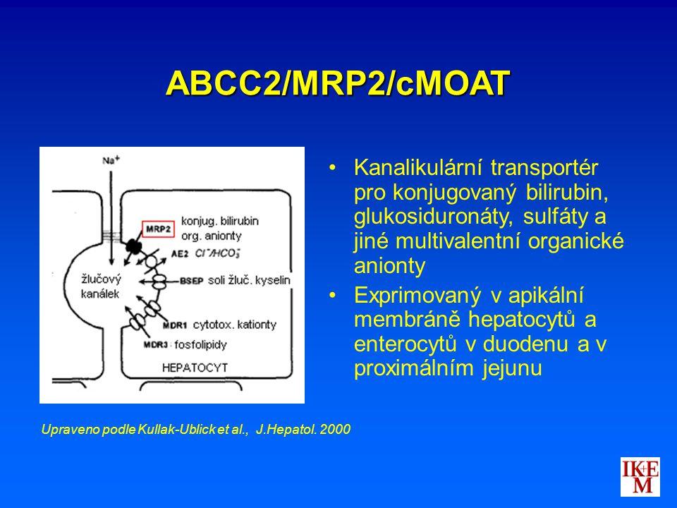 ABCC2/MRP2/cMOAT Kanalikulární transportér pro konjugovaný bilirubin, glukosiduronáty, sulfáty a jiné multivalentní organické anionty.