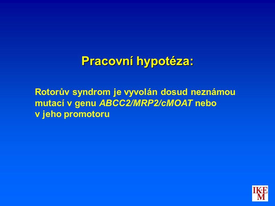 Pracovní hypotéza: Rotorův syndrom je vyvolán dosud neznámou mutací v genu ABCC2/MRP2/cMOAT nebo.