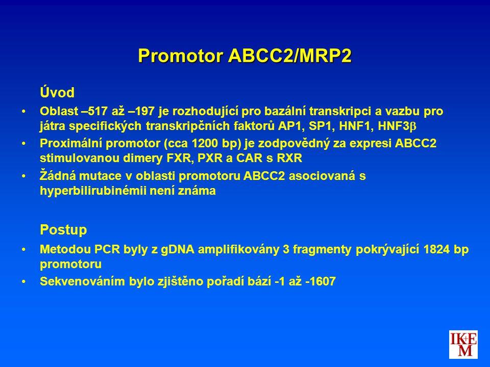 Promotor ABCC2/MRP2 Postup Úvod