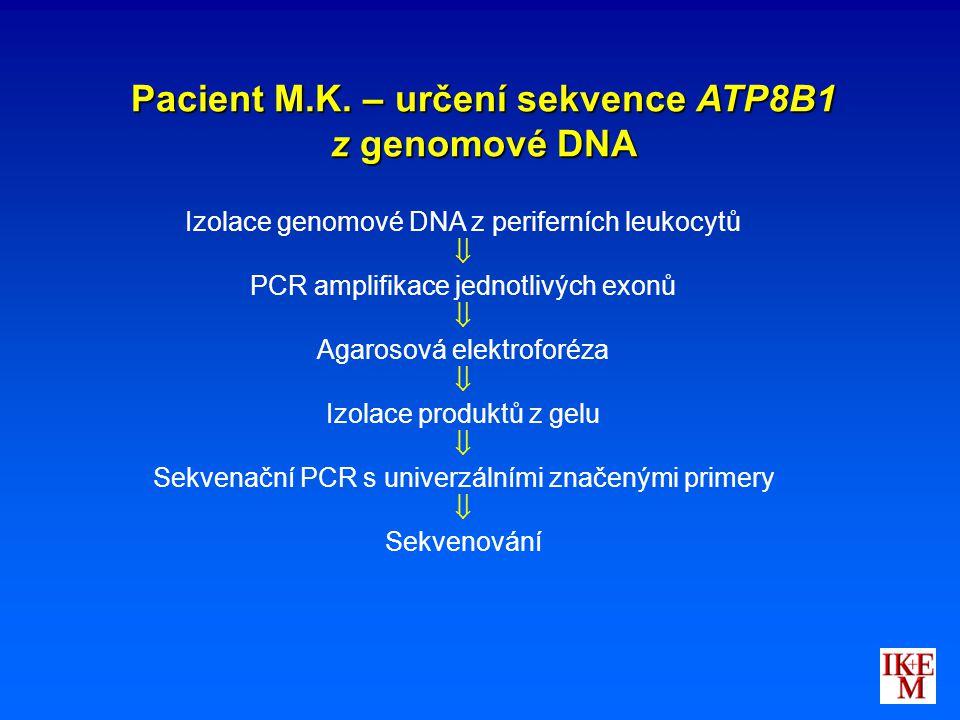 Pacient M.K. – určení sekvence ATP8B1