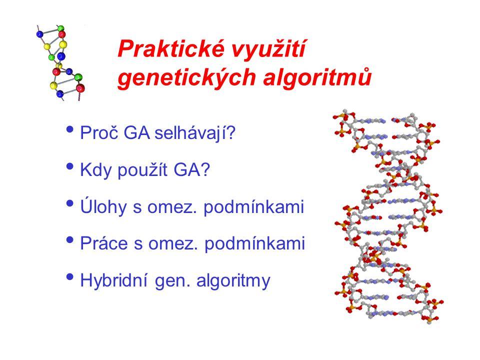Praktické využití genetických algoritmů