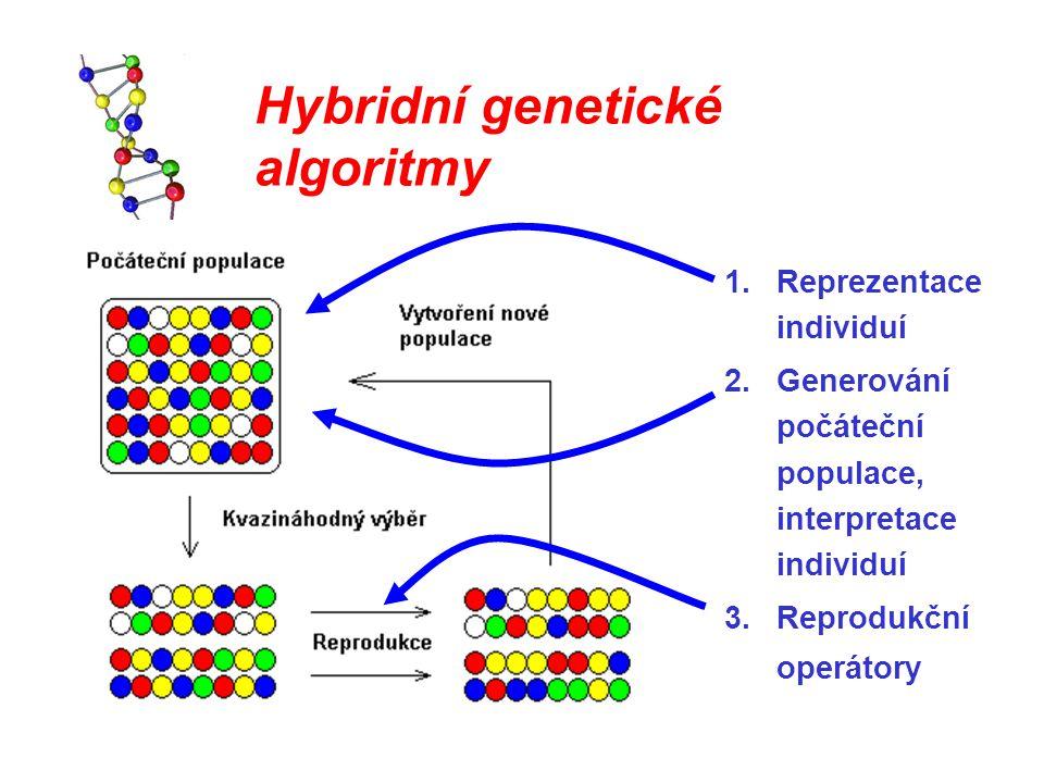 Hybridní genetické algoritmy