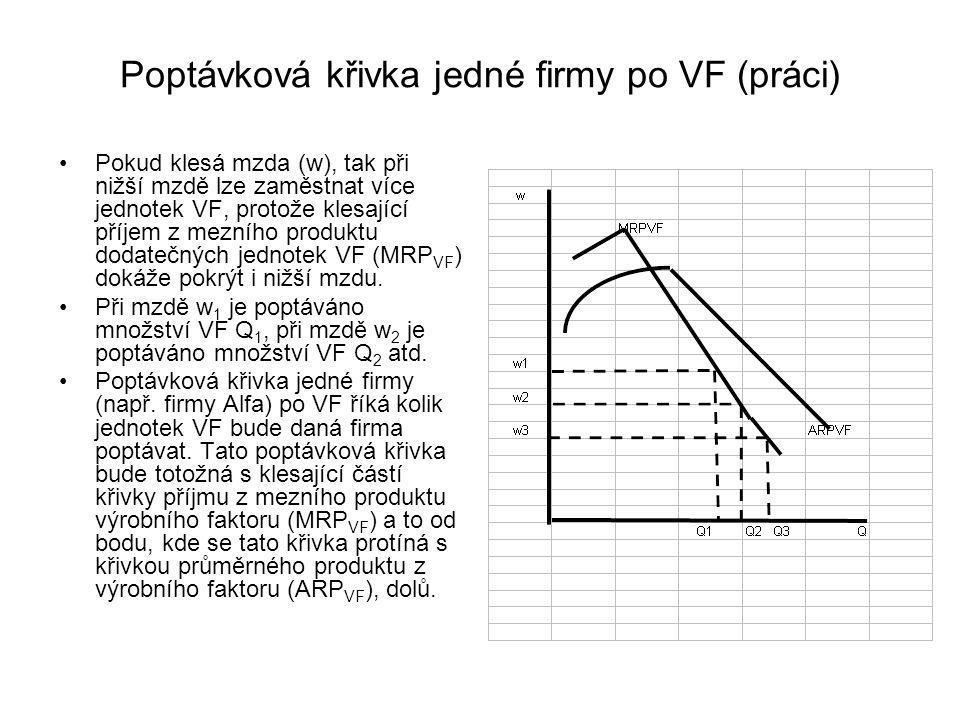 Poptávková křivka jedné firmy po VF (práci)