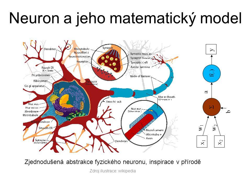 Neuron a jeho matematický model