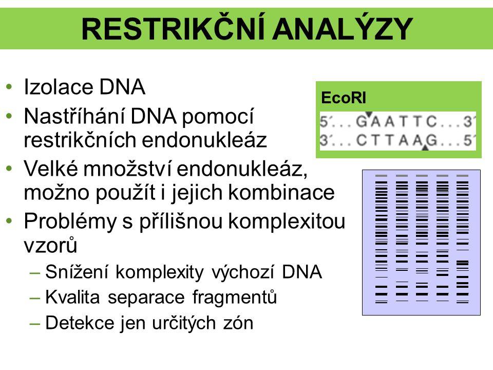 RESTRIKČNÍ ANALÝZY Izolace DNA