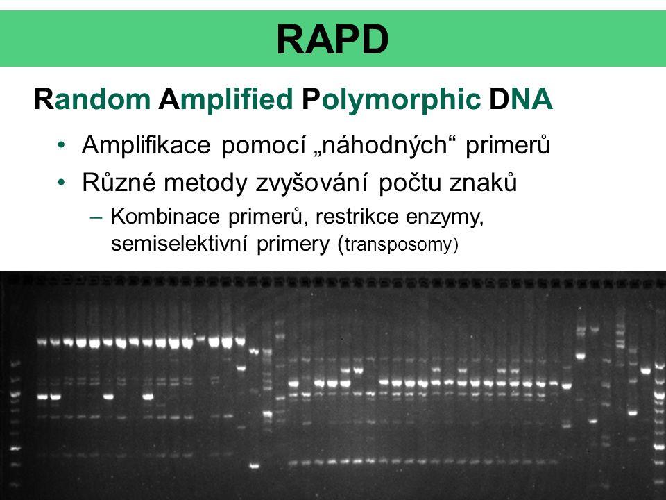 RAPD Random Amplified Polymorphic DNA