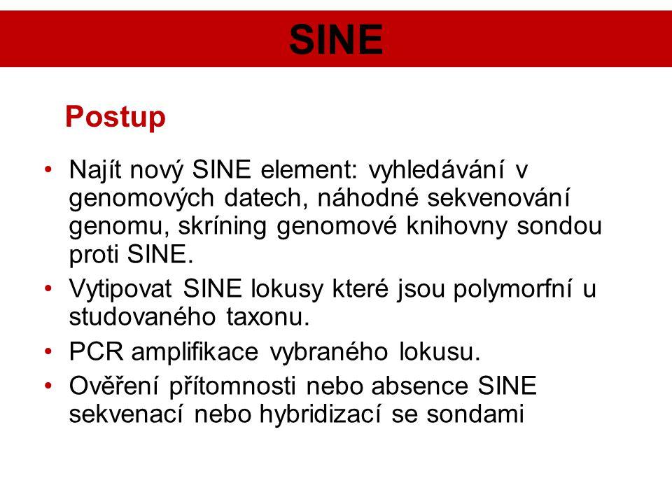 SINE Postup. Najít nový SINE element: vyhledávání v genomových datech, náhodné sekvenování genomu, skríning genomové knihovny sondou proti SINE.