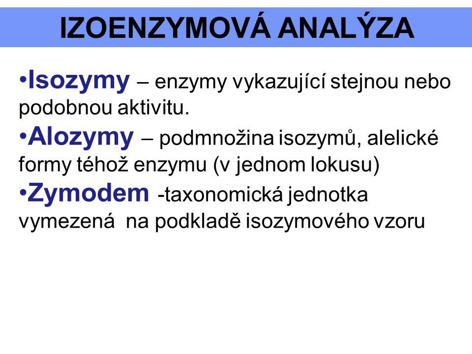 IZOENZYMOVÁ ANALÝZA Isozymy – enzymy vykazující stejnou nebo podobnou aktivitu.