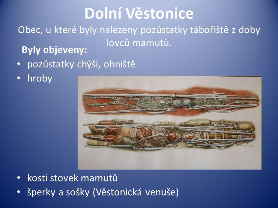 Dolní Věstonice Obec, u které byly nalezeny pozůstatky tábořiště z doby lovců mamutů.