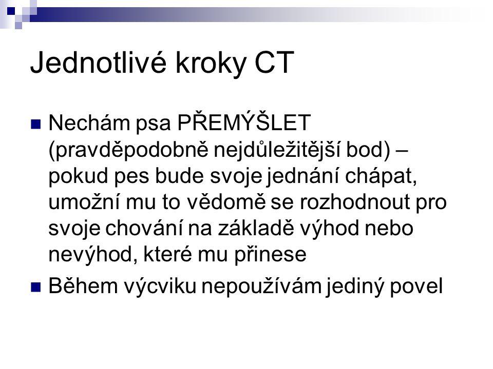 Jednotlivé kroky CT