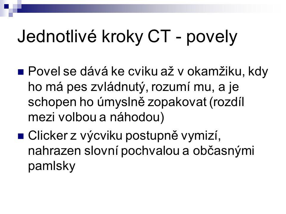 Jednotlivé kroky CT - povely