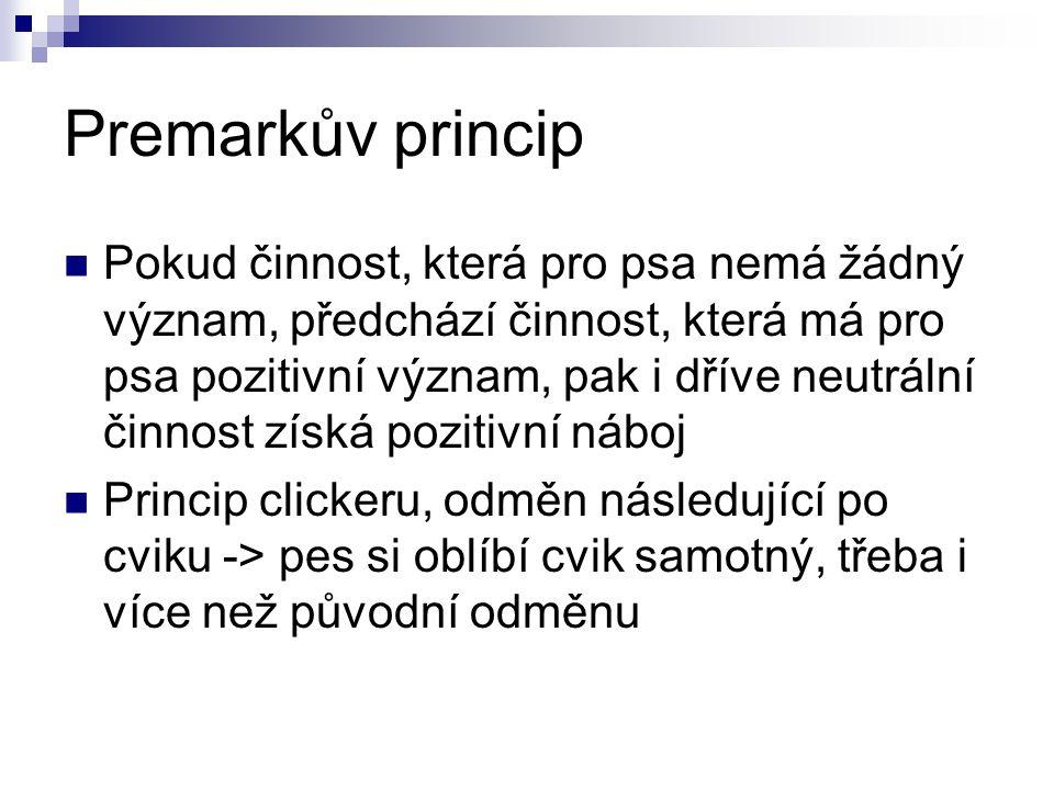 Premarkův princip