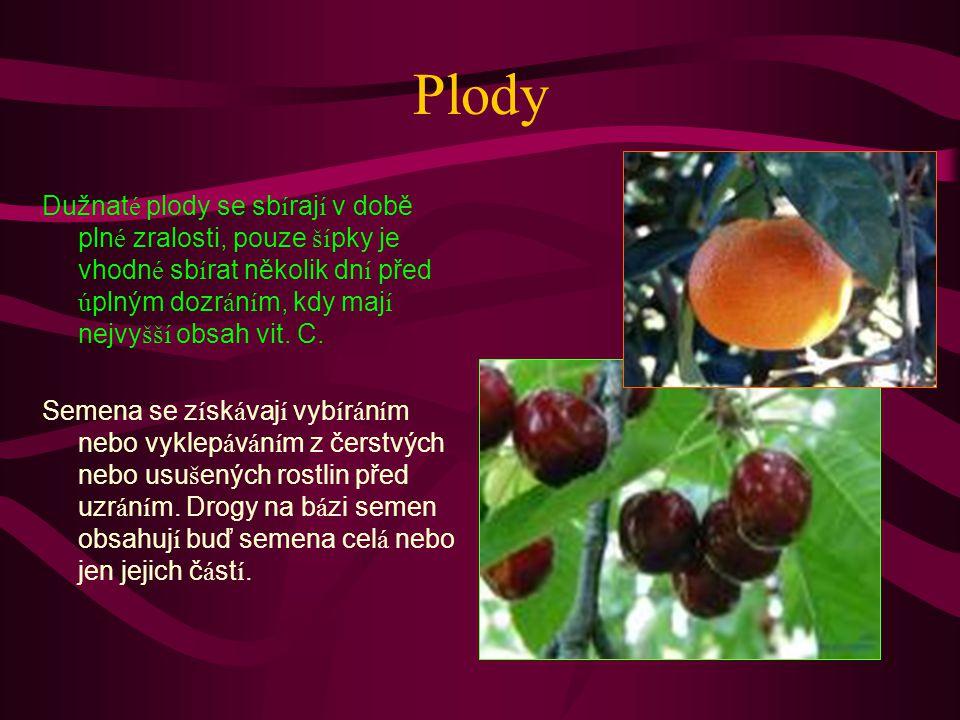 Plody Dužnaté plody se sbírají v době plné zralosti, pouze šípky je vhodné sbírat několik dní před úplným dozráním, kdy mají nejvyšší obsah vit. C.