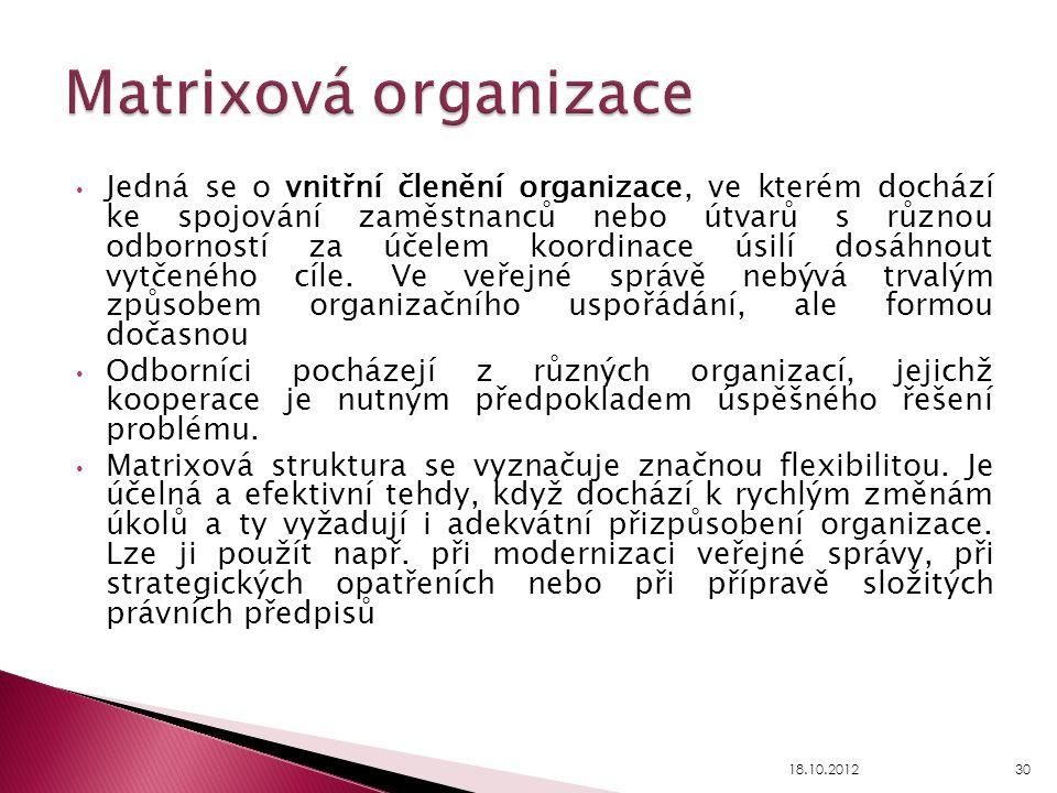 Matrixová organizace