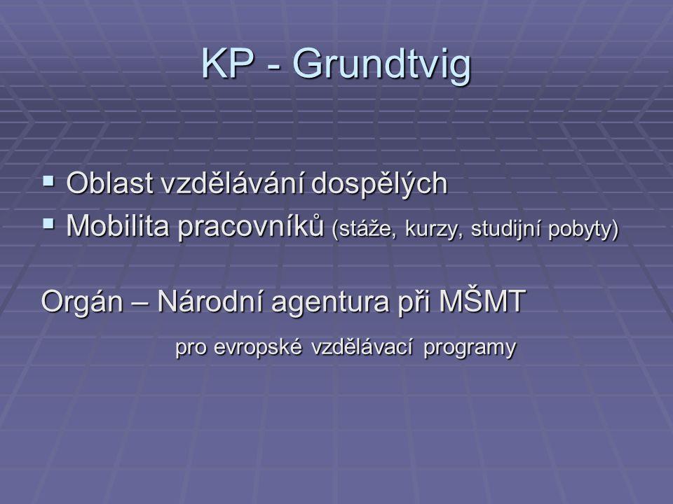 KP - Grundtvig Oblast vzdělávání dospělých