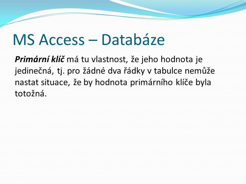 MS Access – Databáze