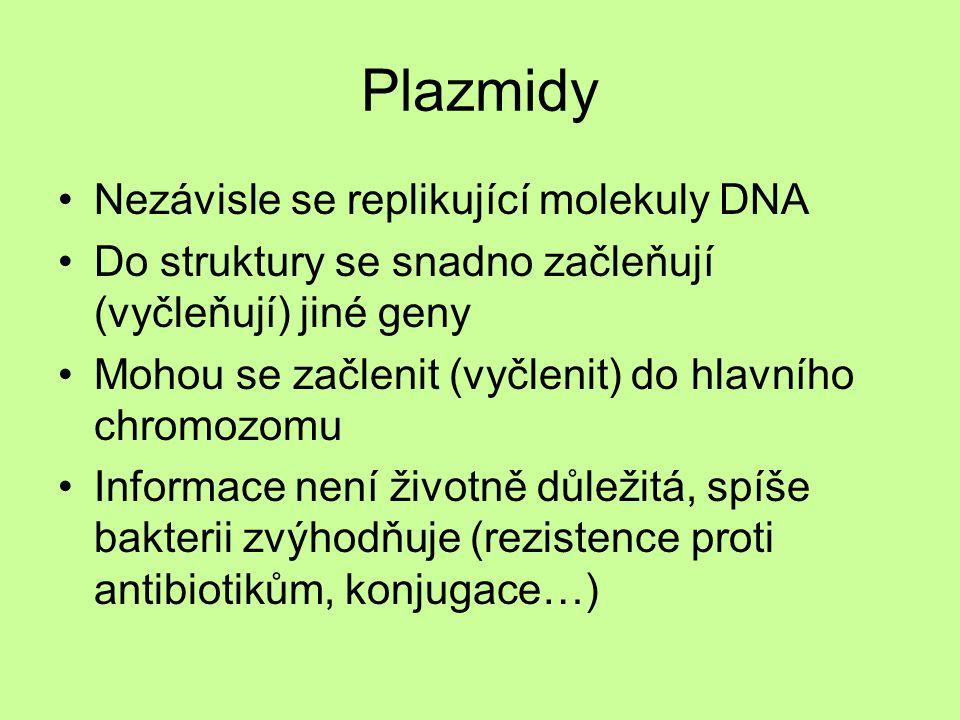 Plazmidy Nezávisle se replikující molekuly DNA