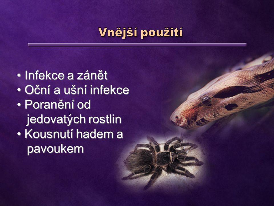 Kousnutí hadem a pavoukem