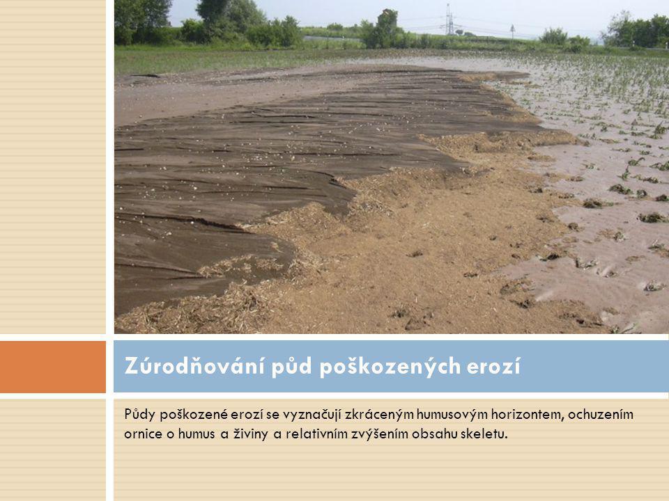 Zúrodňování půd poškozených erozí