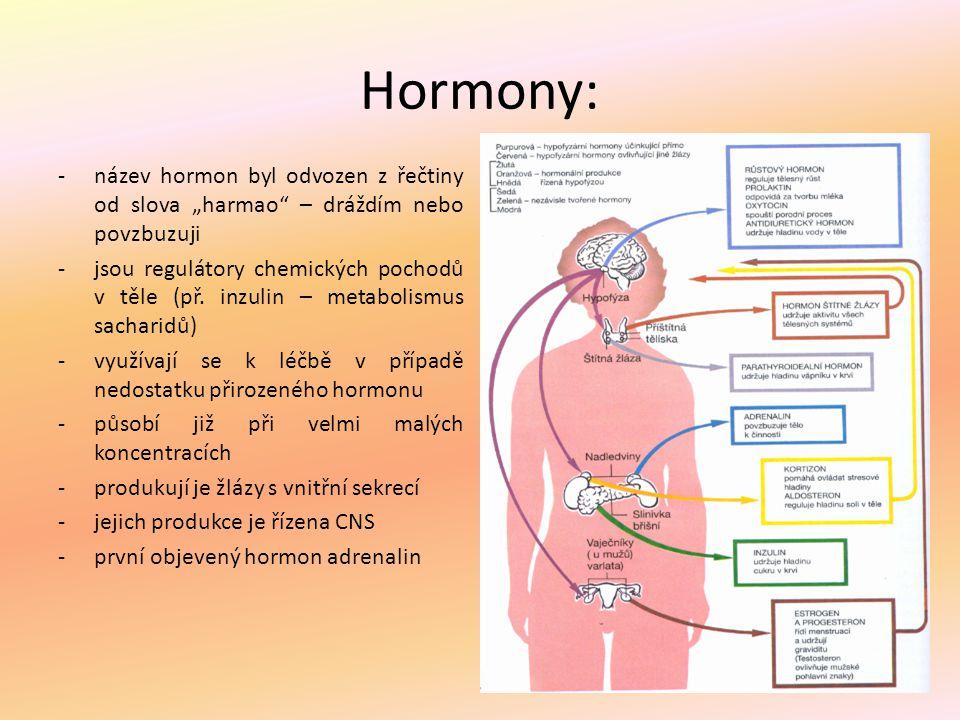 """Hormony: název hormon byl odvozen z řečtiny od slova """"harmao – dráždím nebo povzbuzuji."""
