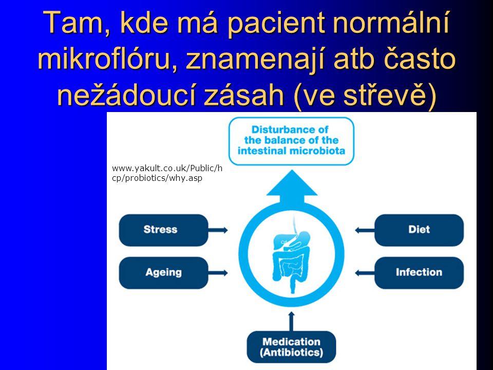 Tam, kde má pacient normální mikroflóru, znamenají atb často nežádoucí zásah (ve střevě)