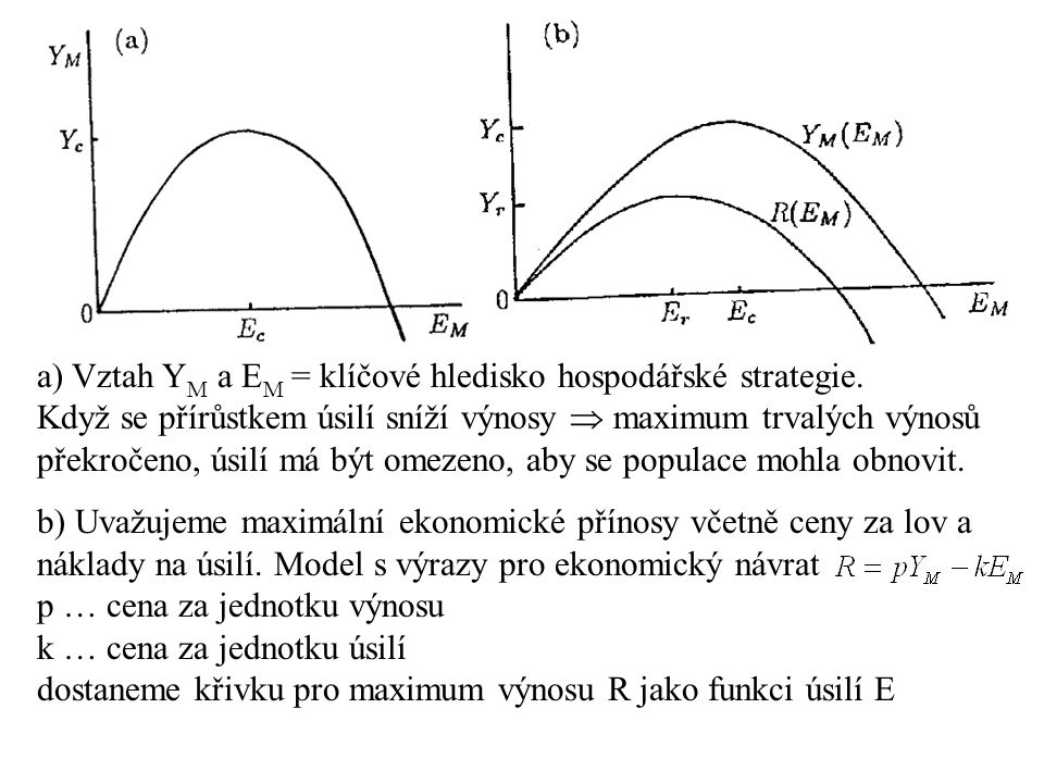 a) Vztah YM a EM = klíčové hledisko hospodářské strategie