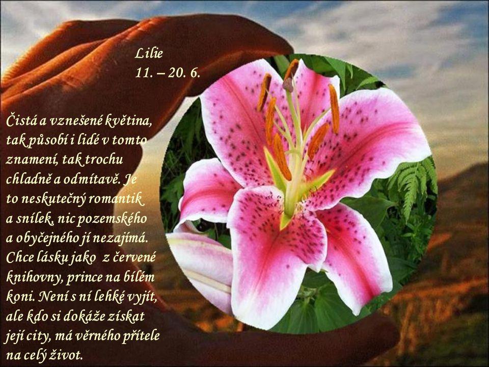 Lilie 11. – 20. 6. Čistá a vznešené květina, tak působí i lidé v tomto znamení, tak trochu chladně a odmítavě. Je.