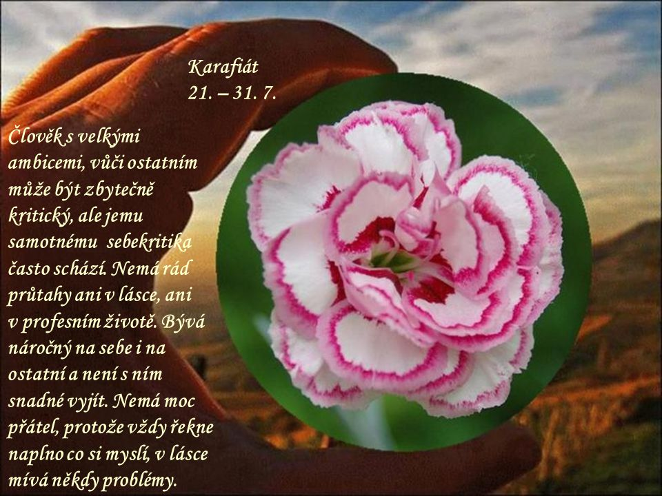 Karafiát 21. – 31. 7.