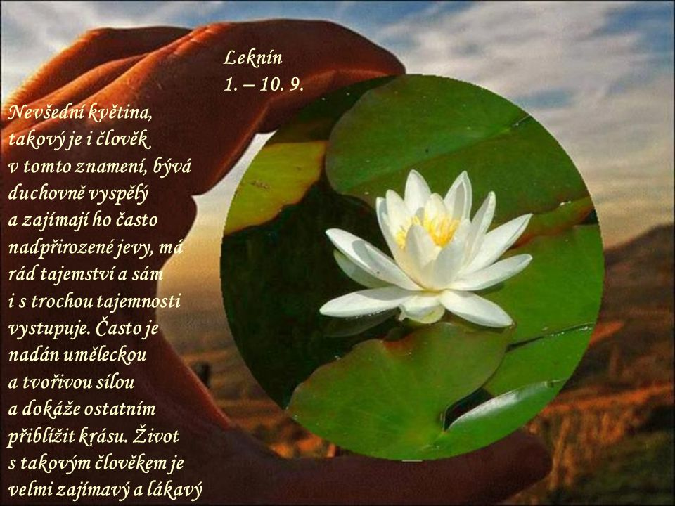 Leknín 1. – 10. 9. Nevšední květina, takový je i člověk v tomto znamení, bývá duchovně vyspělý.