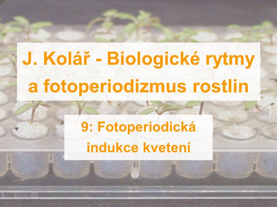 J. Kolář - Biologické rytmy a fotoperiodizmus rostlin