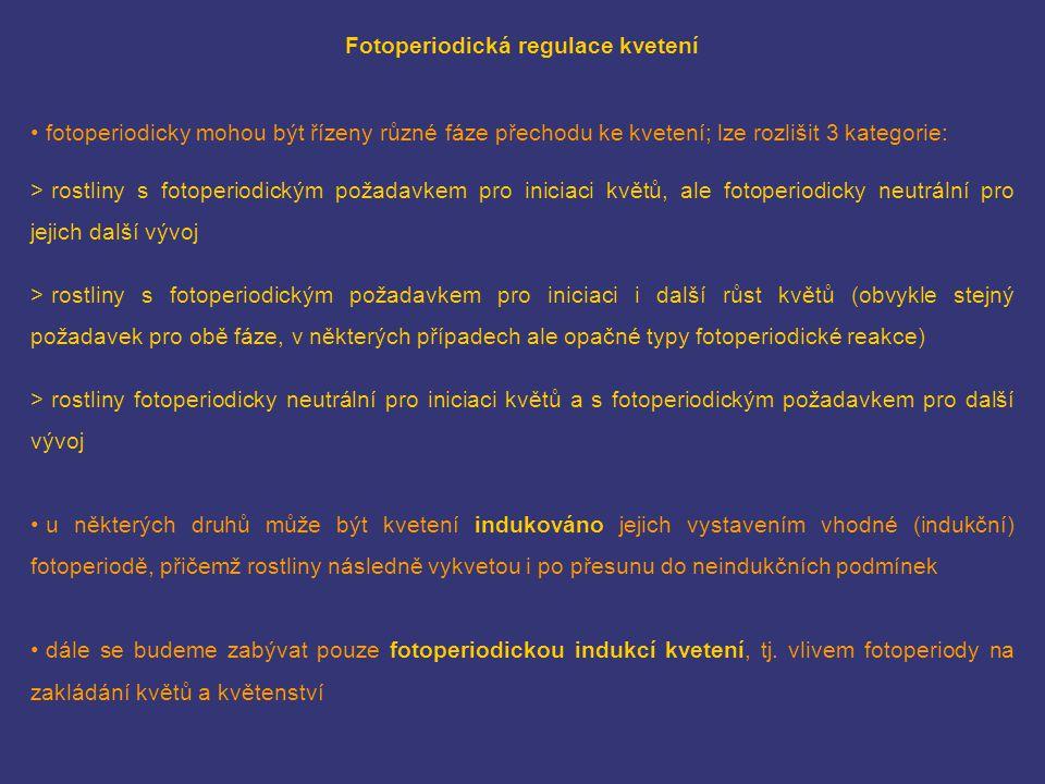 Fotoperiodická regulace kvetení