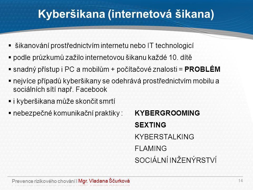 Kyberšikana (internetová šikana)