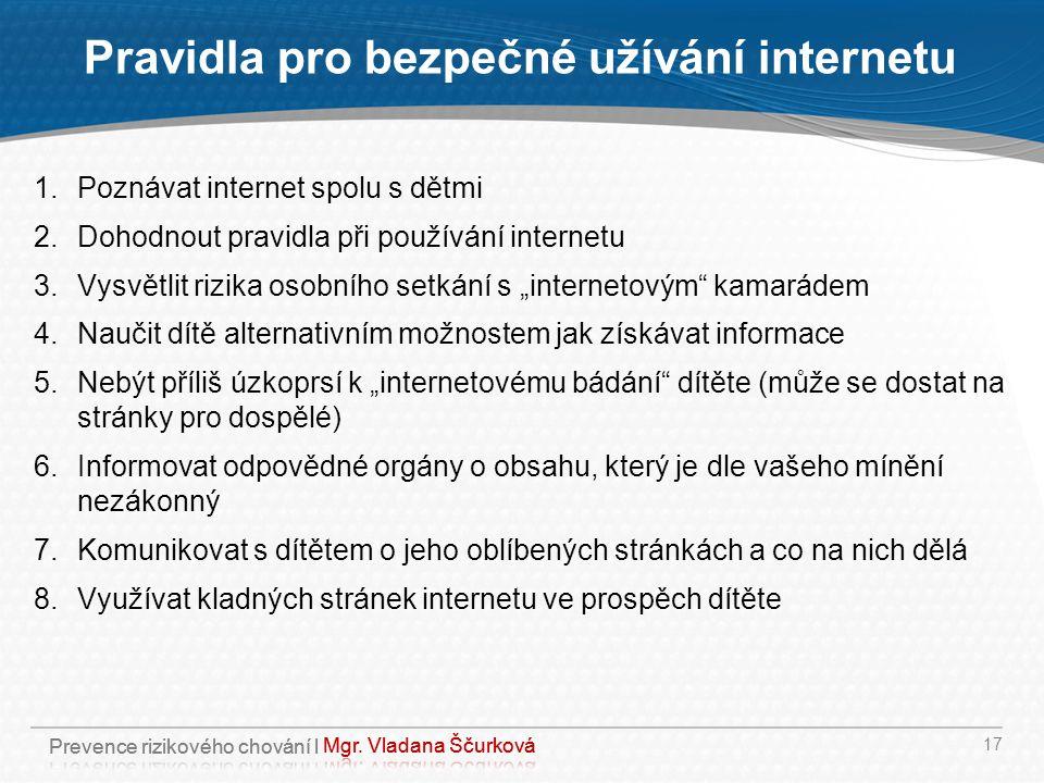 Pravidla pro bezpečné užívání internetu