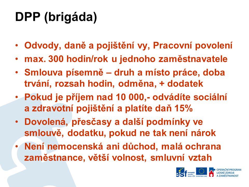 DPP (brigáda) Odvody, daně a pojištění vy, Pracovní povolení