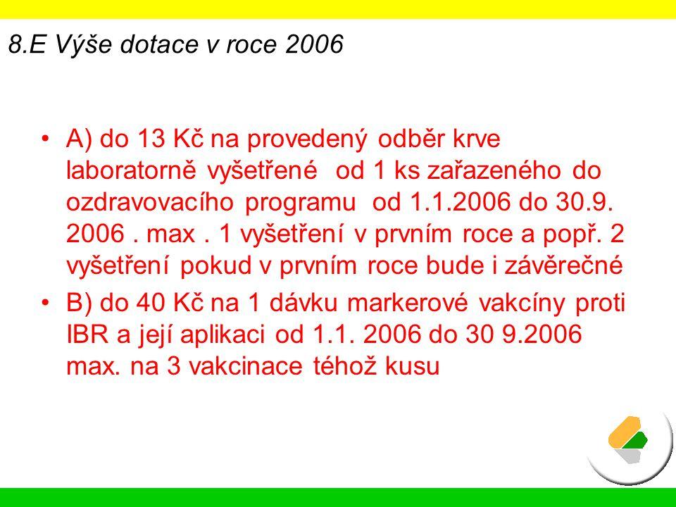 8.E Výše dotace v roce 2006