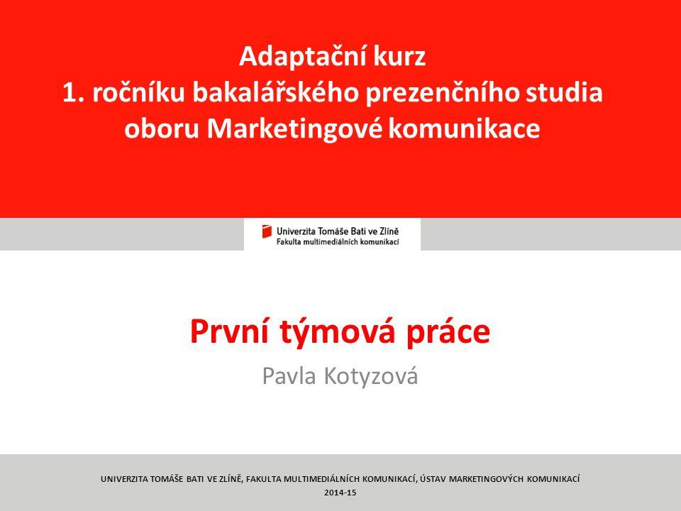 První týmová práce Pavla Kotyzová