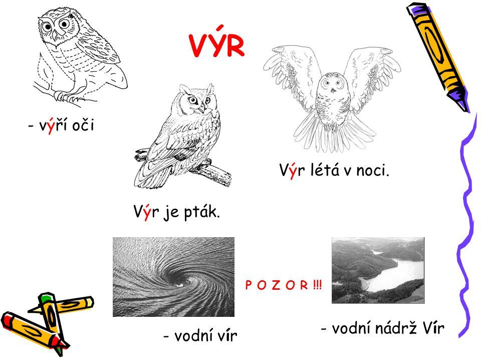 VÝR - výří oči Výr létá v noci. Výr je pták. - vodní vír P O Z O R !!!
