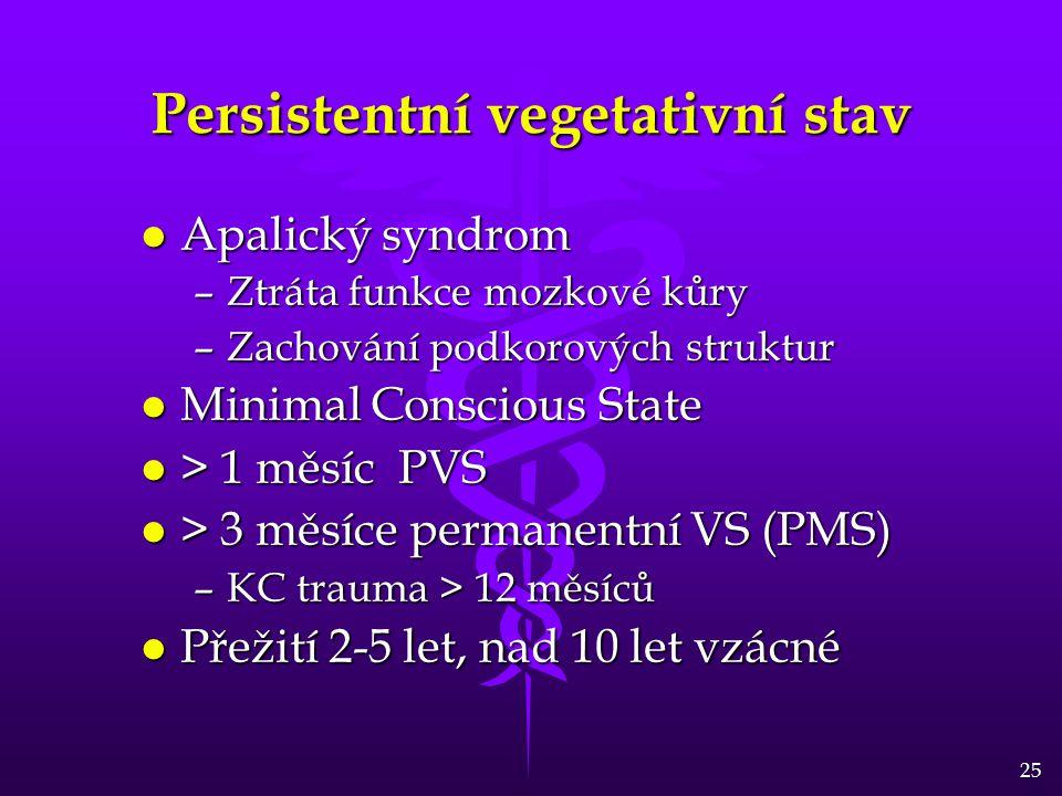 Persistentní vegetativní stav