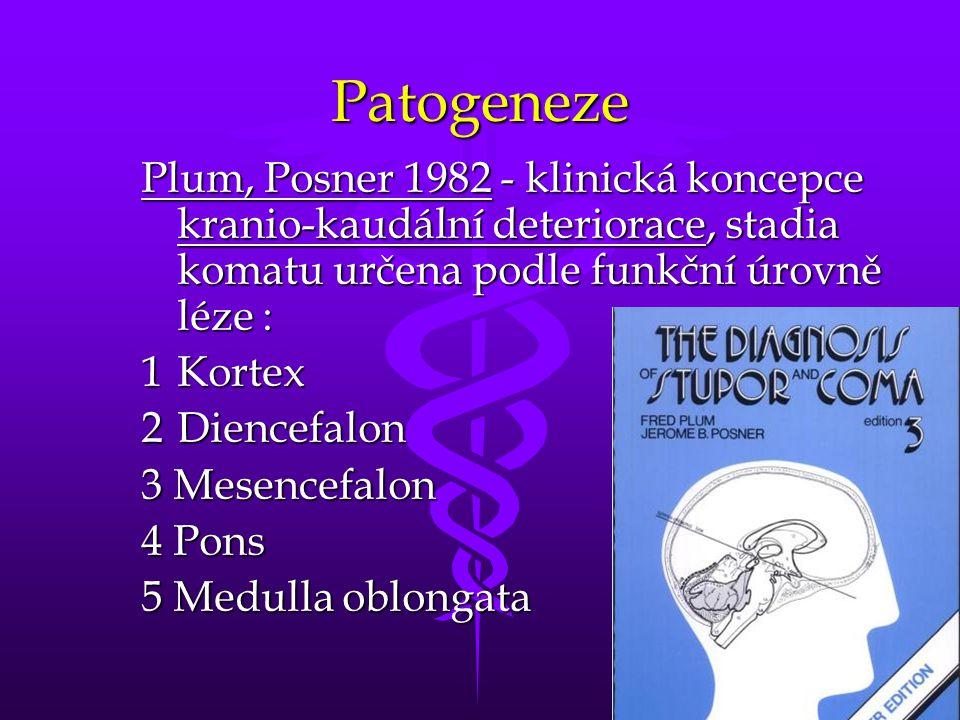 Patogeneze Plum, Posner 1982 - klinická koncepce kranio-kaudální deteriorace, stadia komatu určena podle funkční úrovně léze :