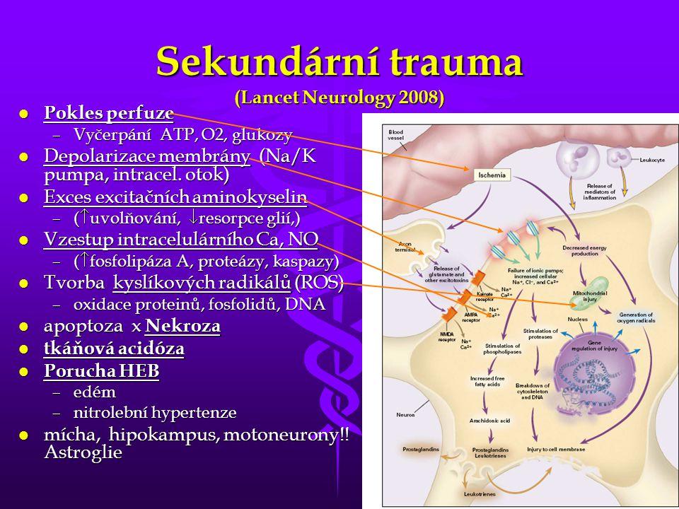 Sekundární trauma (Lancet Neurology 2008)