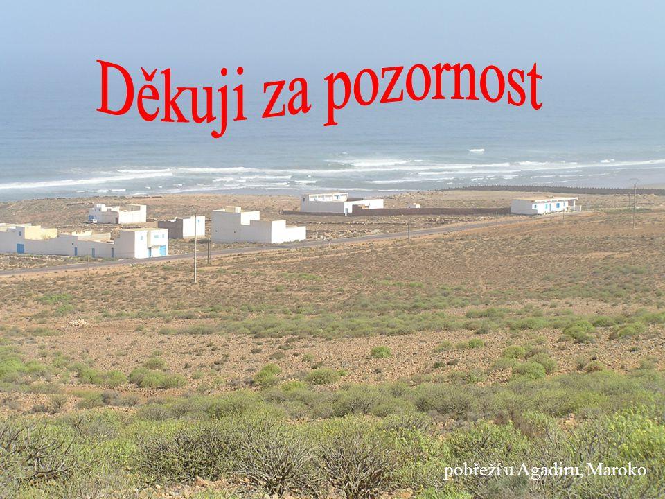 Děkuji za pozornost pobřeží u Agadiru, Maroko