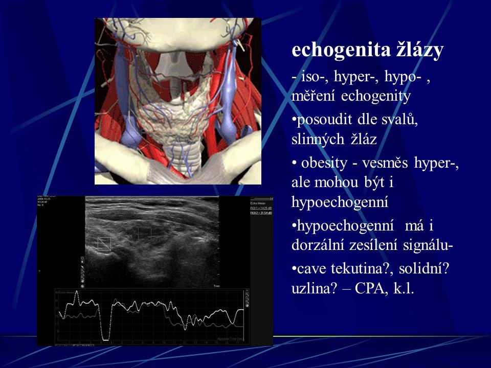 echogenita žlázy - iso-, hyper-, hypo- , měření echogenity