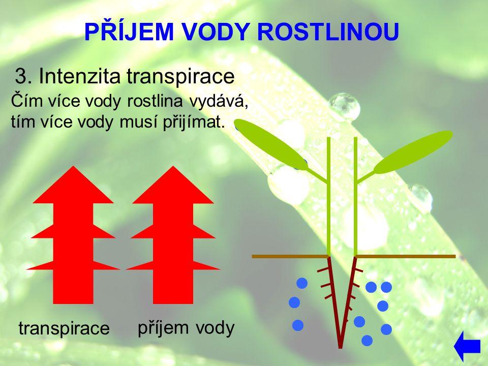 PŘÍJEM VODY ROSTLINOU 3. Intenzita transpirace transpirace příjem vody