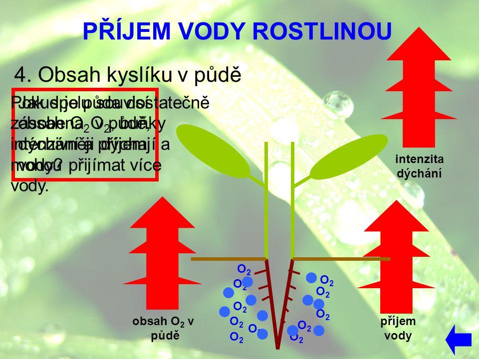 PŘÍJEM VODY ROSTLINOU 4. Obsah kyslíku v půdě Pokud je půda dostatečně