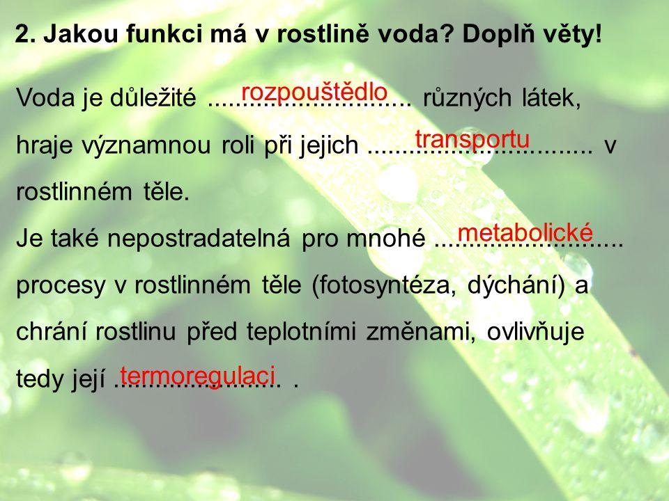 2. Jakou funkci má v rostlině voda Doplň věty!