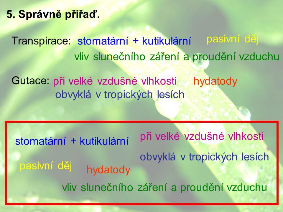 5. Správně přiřaď. pasivní děj. Transpirace: Gutace: stomatární + kutikulární. vliv slunečního záření a proudění vzduchu.