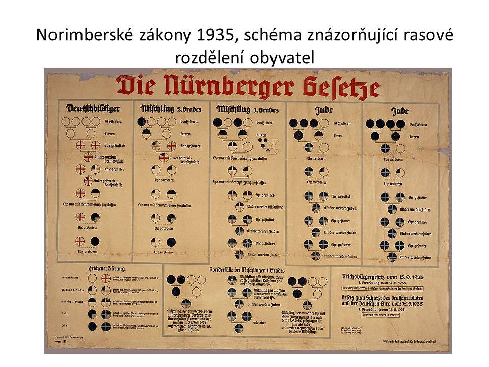 Norimberské zákony 1935, schéma znázorňující rasové rozdělení obyvatel